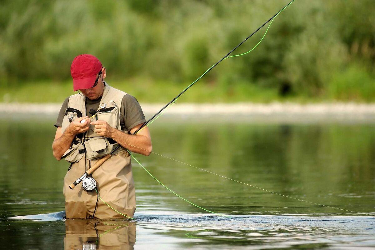 где ловить рыбу в новгородской