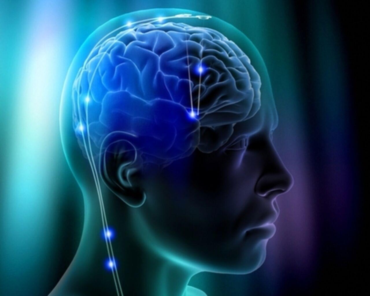 Мозг. Инструкция по применению 26