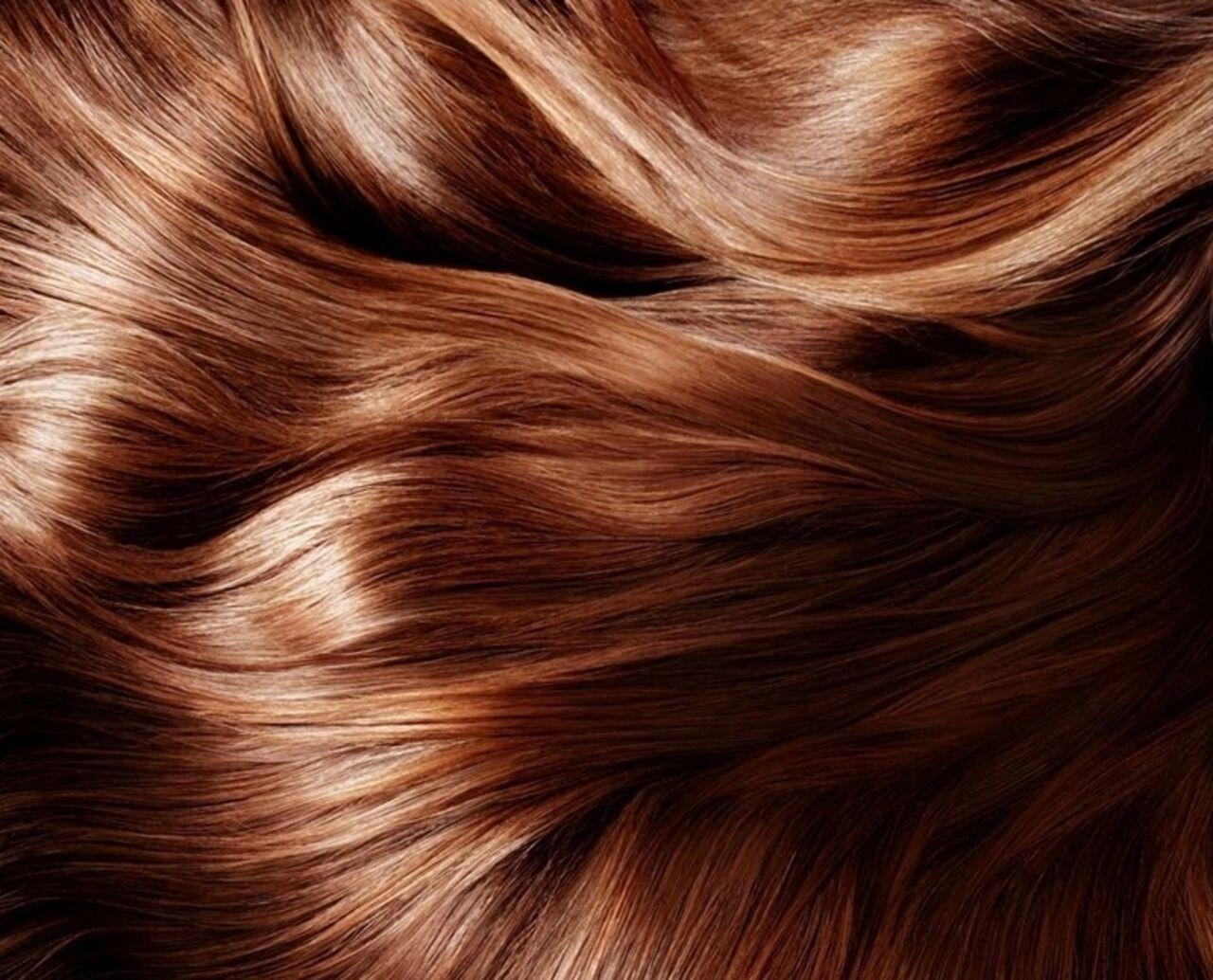 Семеро изсемьи за длиннющие волосы: СКначал проверку
