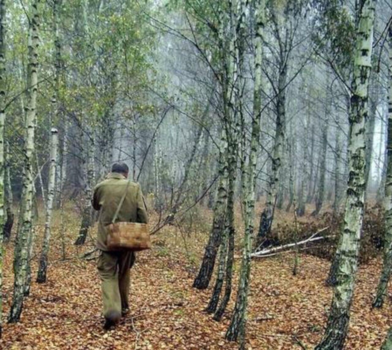 Трое парней одну в лесу 12 фотография