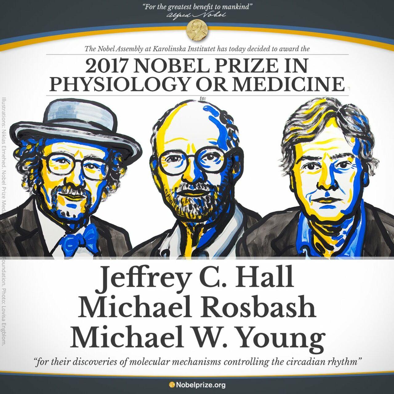 Стали известны лауреаты Нобелевской премии пофизиологии имедицине