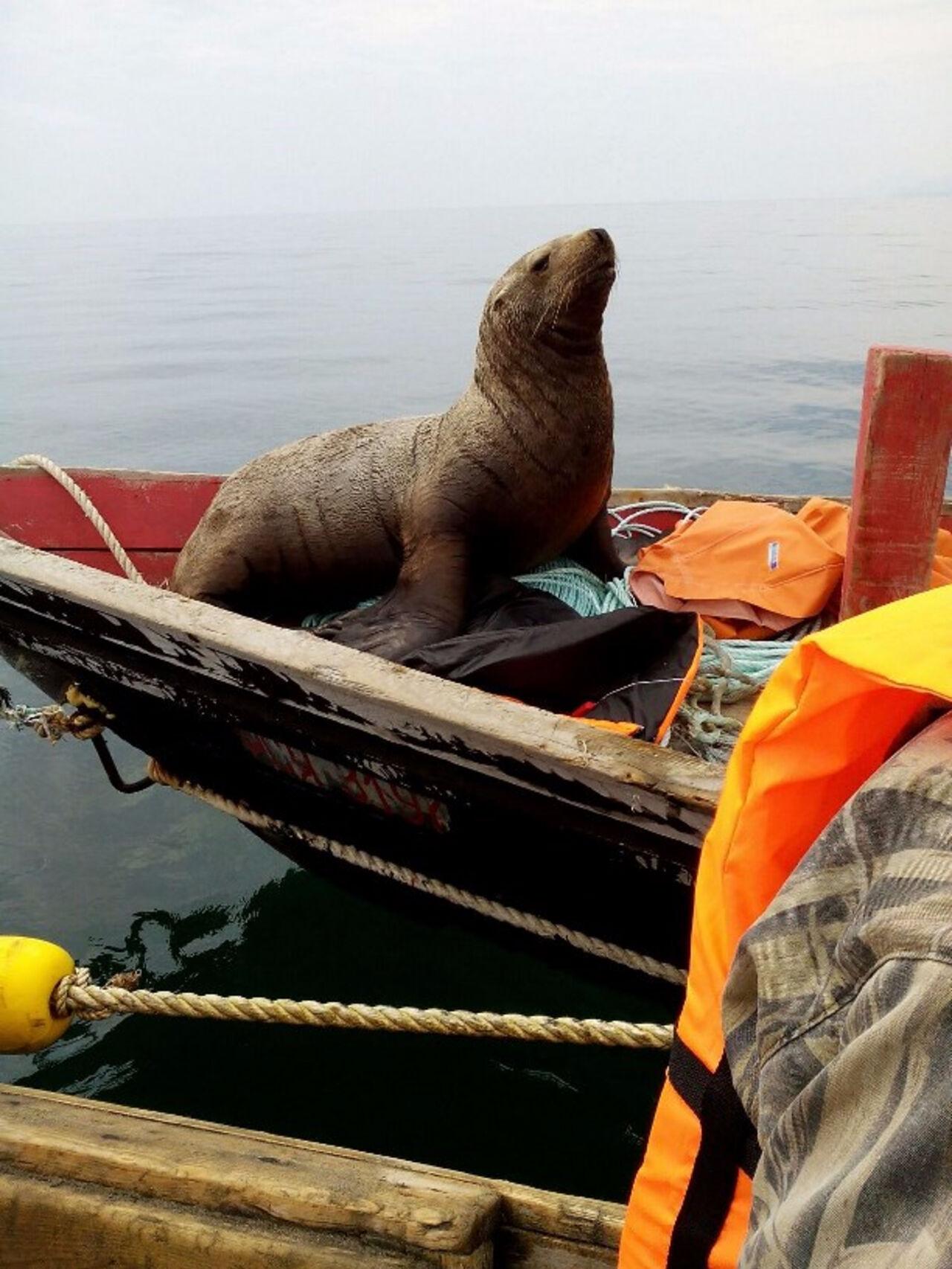 море рыбаки ушли