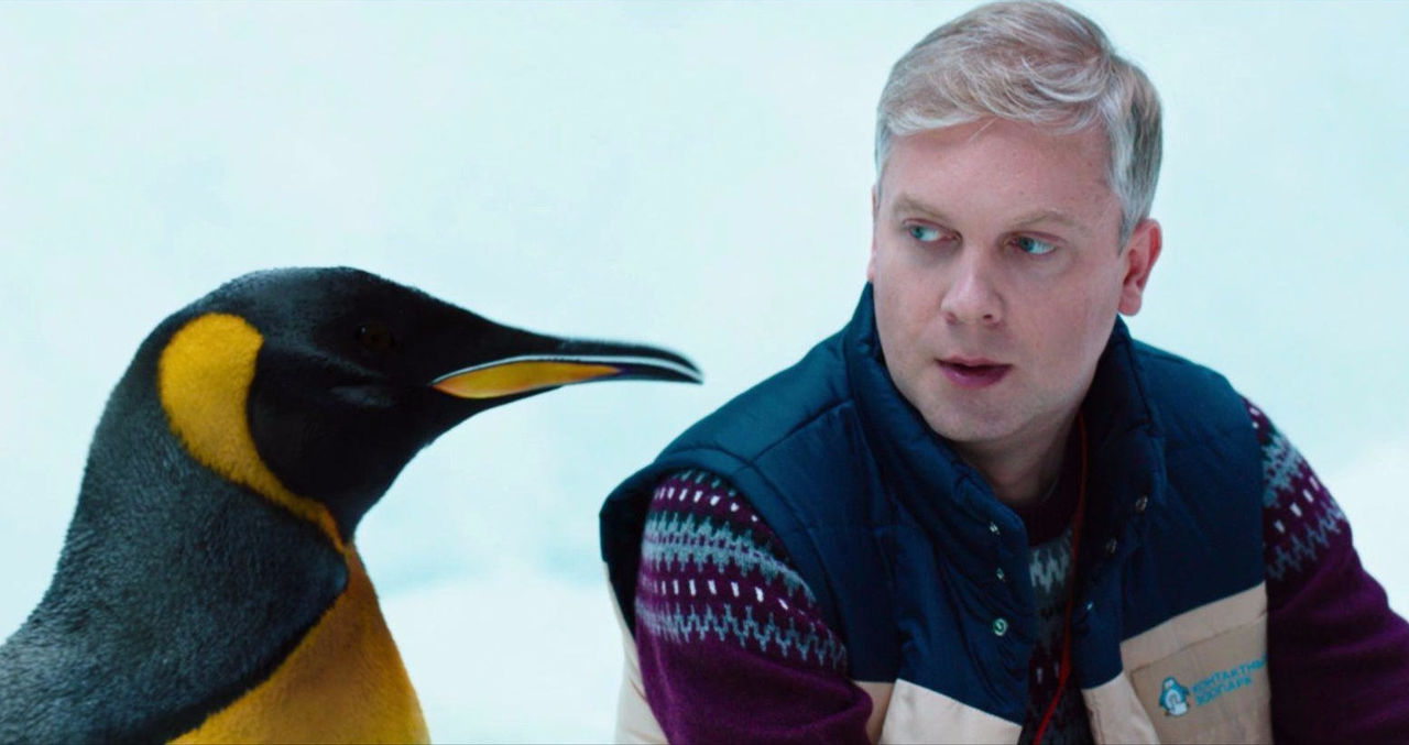 Пингвины едят 26 видов морепродуктов— Биологи