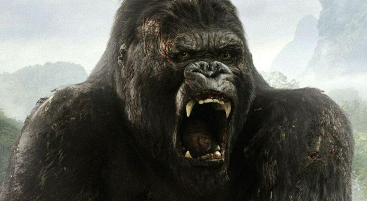 Напремьере фильма про Кинг-Конга загорелась пятиметровая статуя гориллы