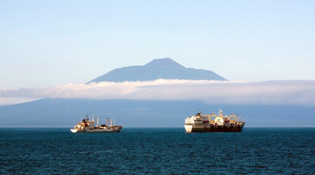 ВЯпонии сегодня обсудят общее освоение Курильских островов