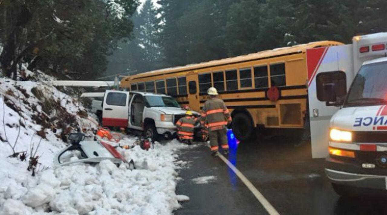 Два человека пострадали при столкновении школьного автобуса и грузового автомобиля вКанаде