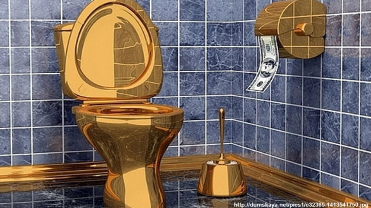 Владимирский губернатор отменила госзакупку туалетного ершика за23 тысячи