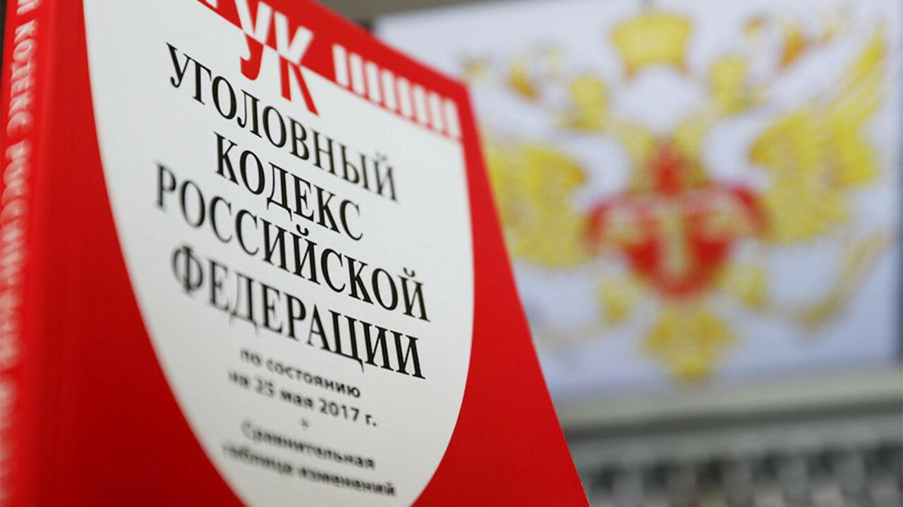 В Российской Федерации хотят сажать затяжкие правонарушения с12 лет