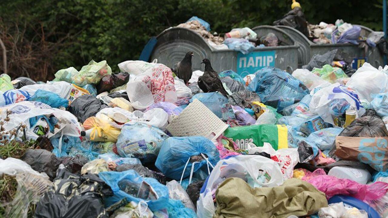 Киеву угрожает экологическая трагедия из-за огромной свалки