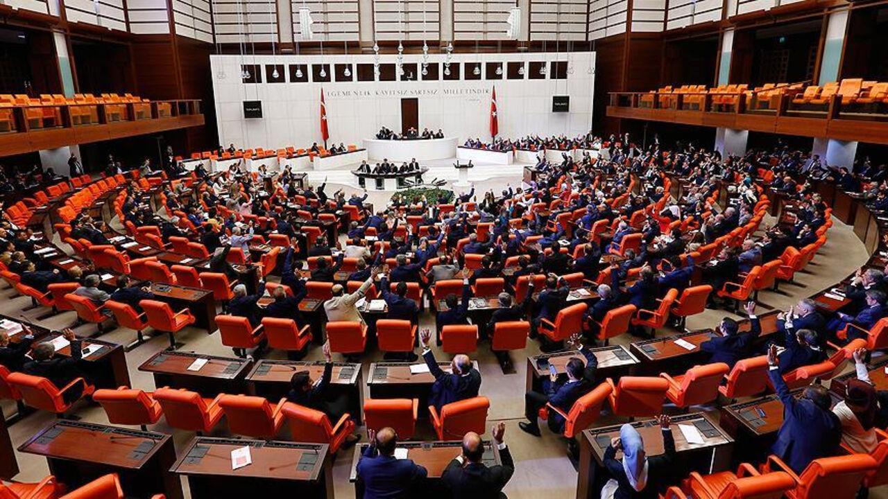 Драка между дамами вспыхнула впарламенте Турции