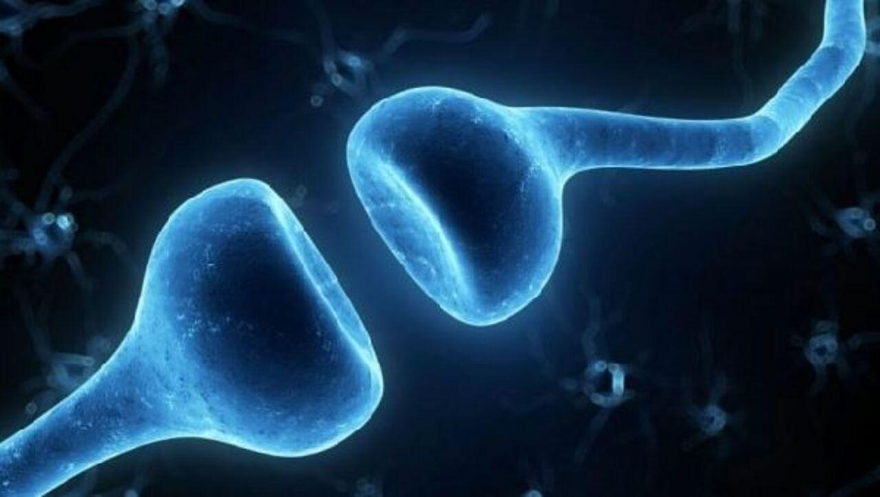 Может ли марихуана победить болезнь Альцгеймера?
