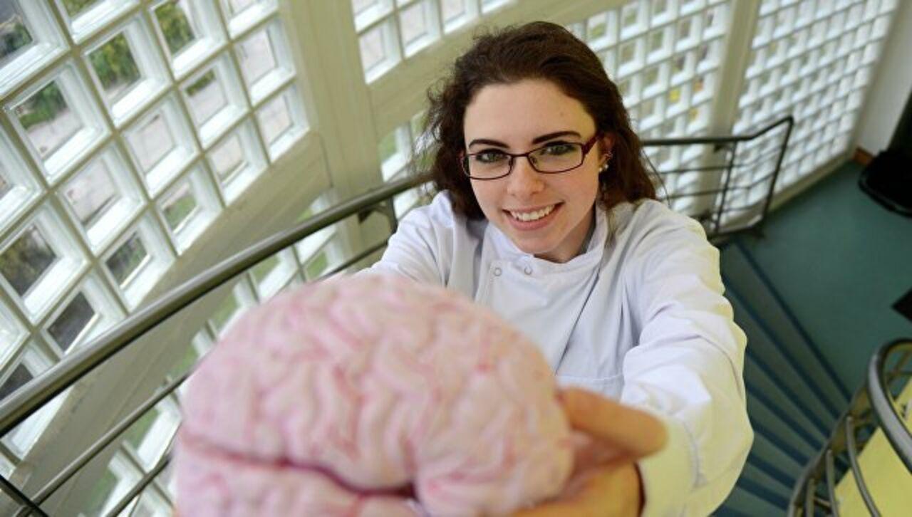 Ученые просят людей жертвовать собственный мозг после смерти науке