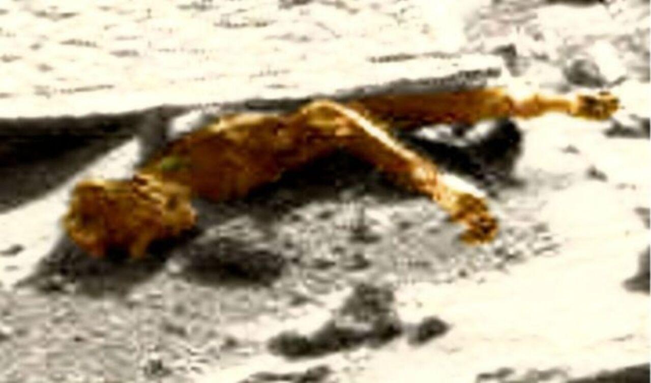 Уфологам удалось найти труп инопланетянина наснимках смарсохода