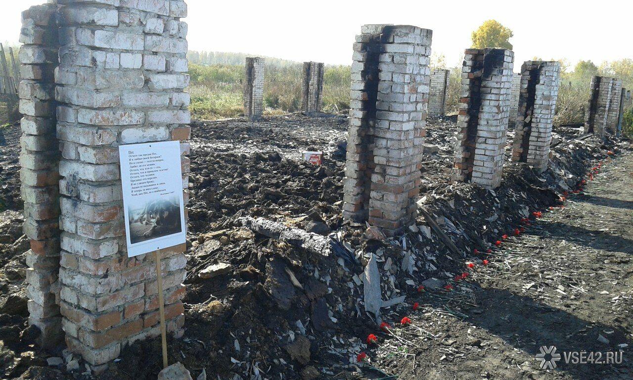 Всгоревшем приюте погибли неменее 100 собак: возбуждено дело оподжоге