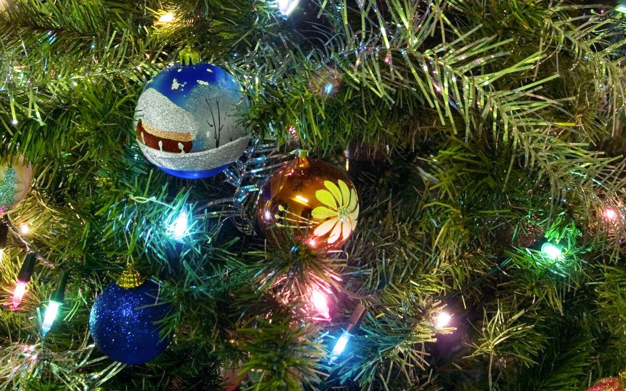 ВЛесной Поляне поставили семиметровую новогоднюю ель