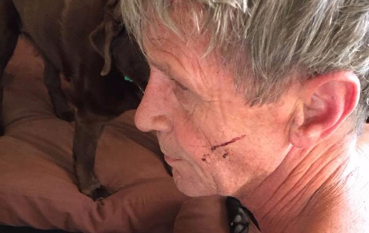 ВКанаде 61-летний мужчина набил морду разъярённой медведице