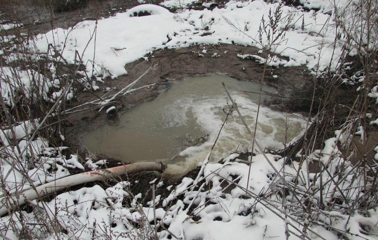 ВНовосибирской области фекалии слили влечебные грязи озера Карачи