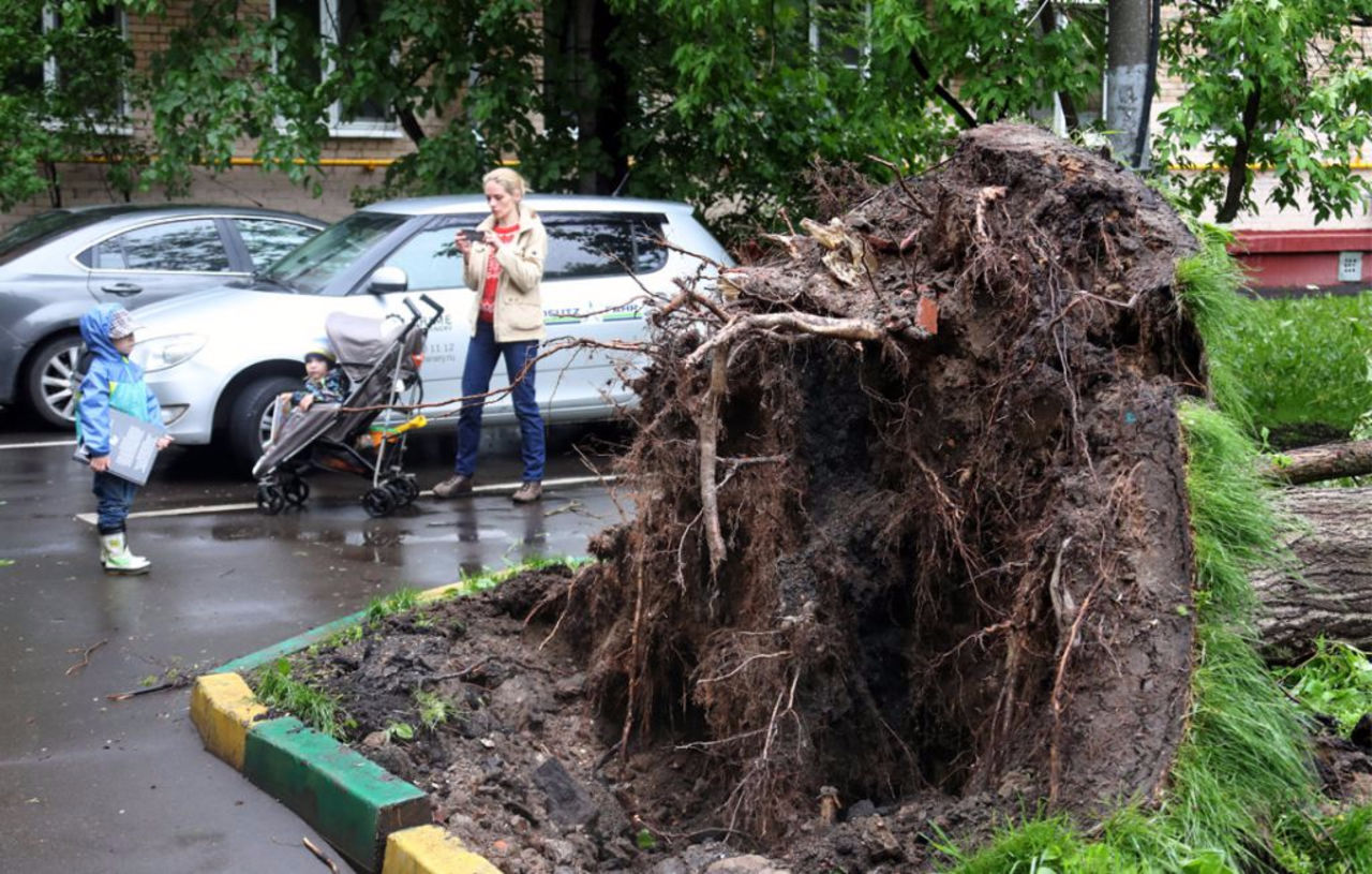 Росгидромет непредупредил онадвигающейся настолицу ужасной стихие— МЧС