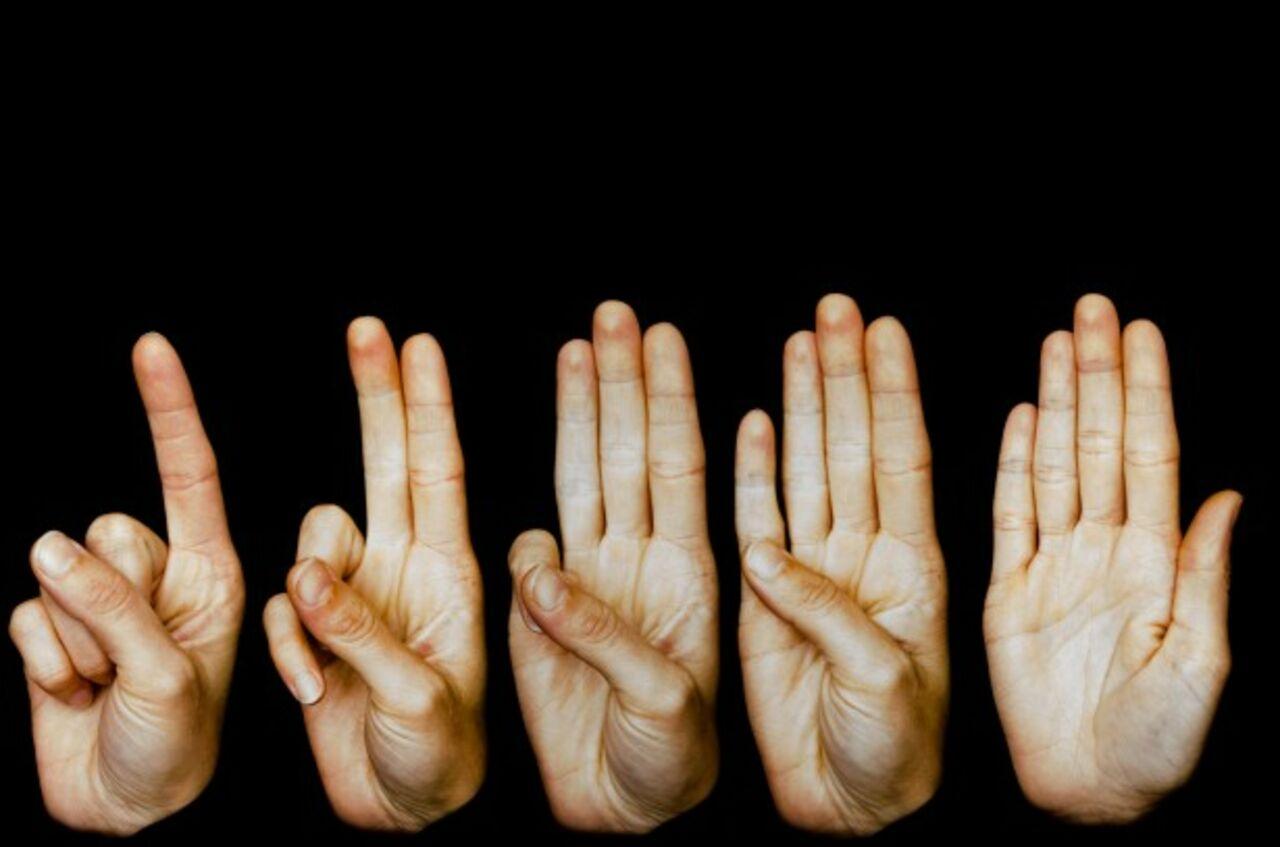 Почему у человека на руке 5 пальцев