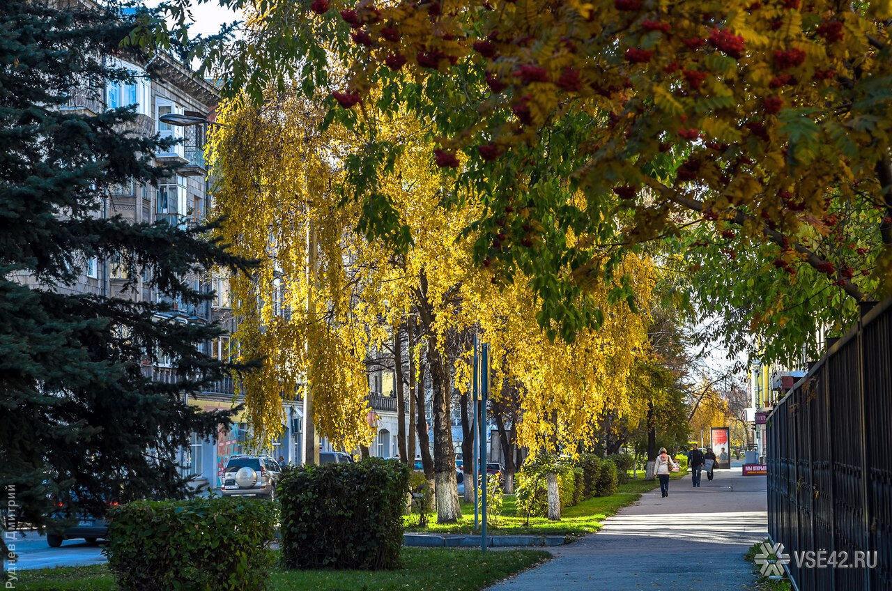 Синоптики: напредстоящих выходных вКузбассе предполагается потепление