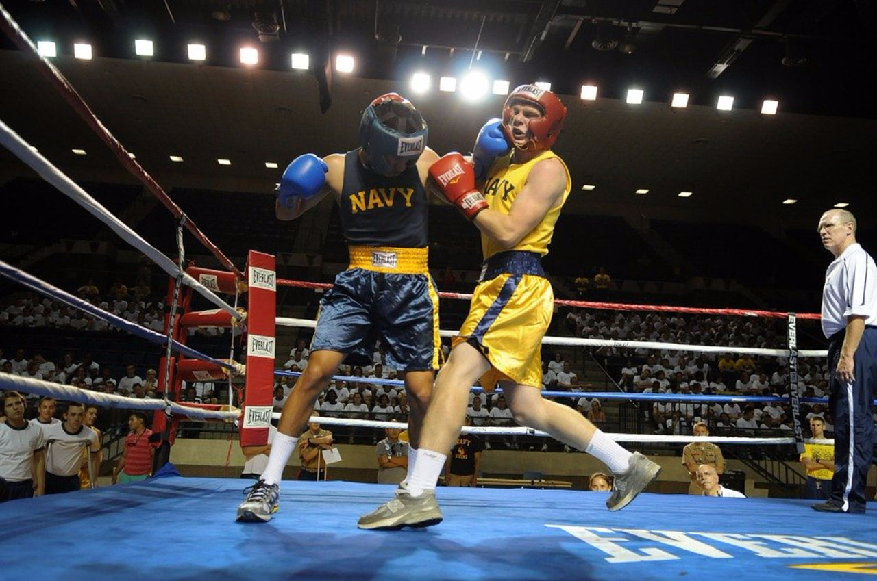 Власти Швеции могут запретить занятия профессиональным боксом вгосударстве