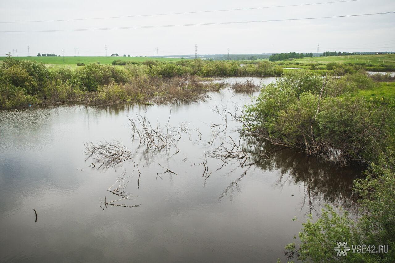 рыбалка в чесноково кемеровская областье