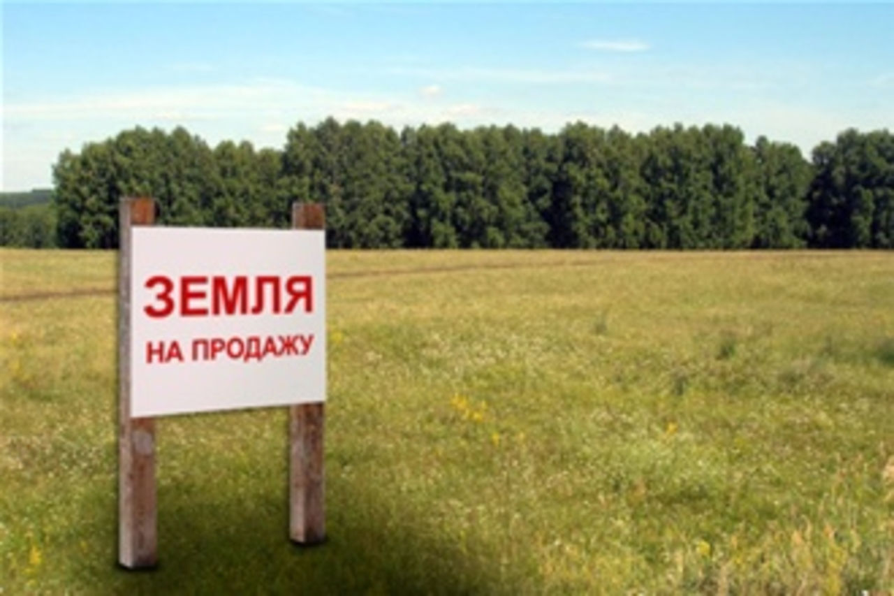 Иностранным компаниям могут запретить покупать госземли