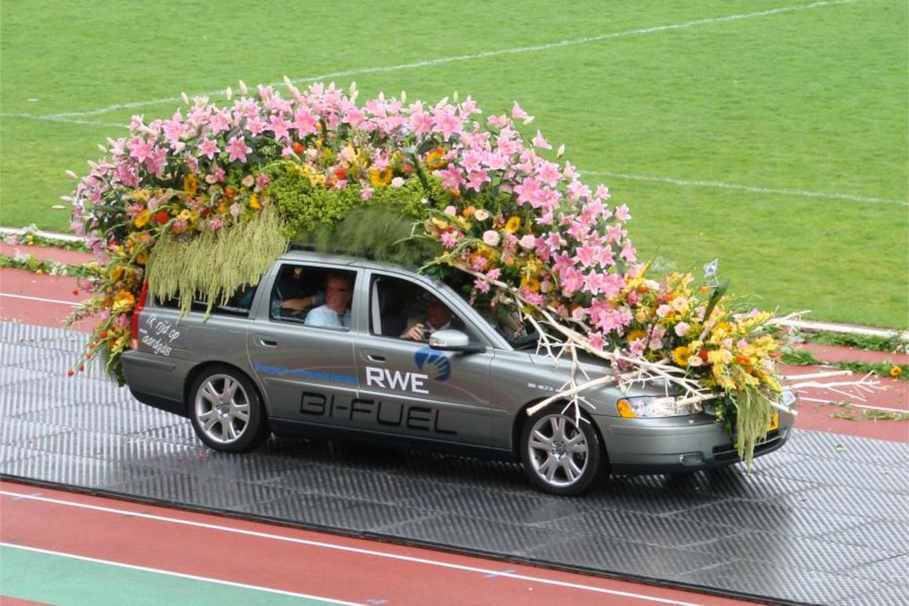 Продажа авто цветов фото