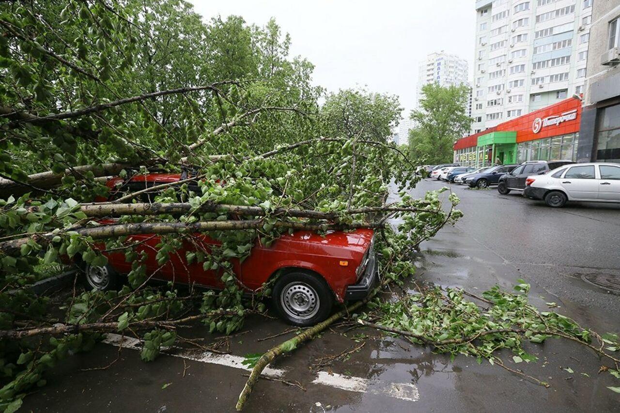 Ужасный циклон в российской столице забрал жизни 11 человек иснес крышу Кремля