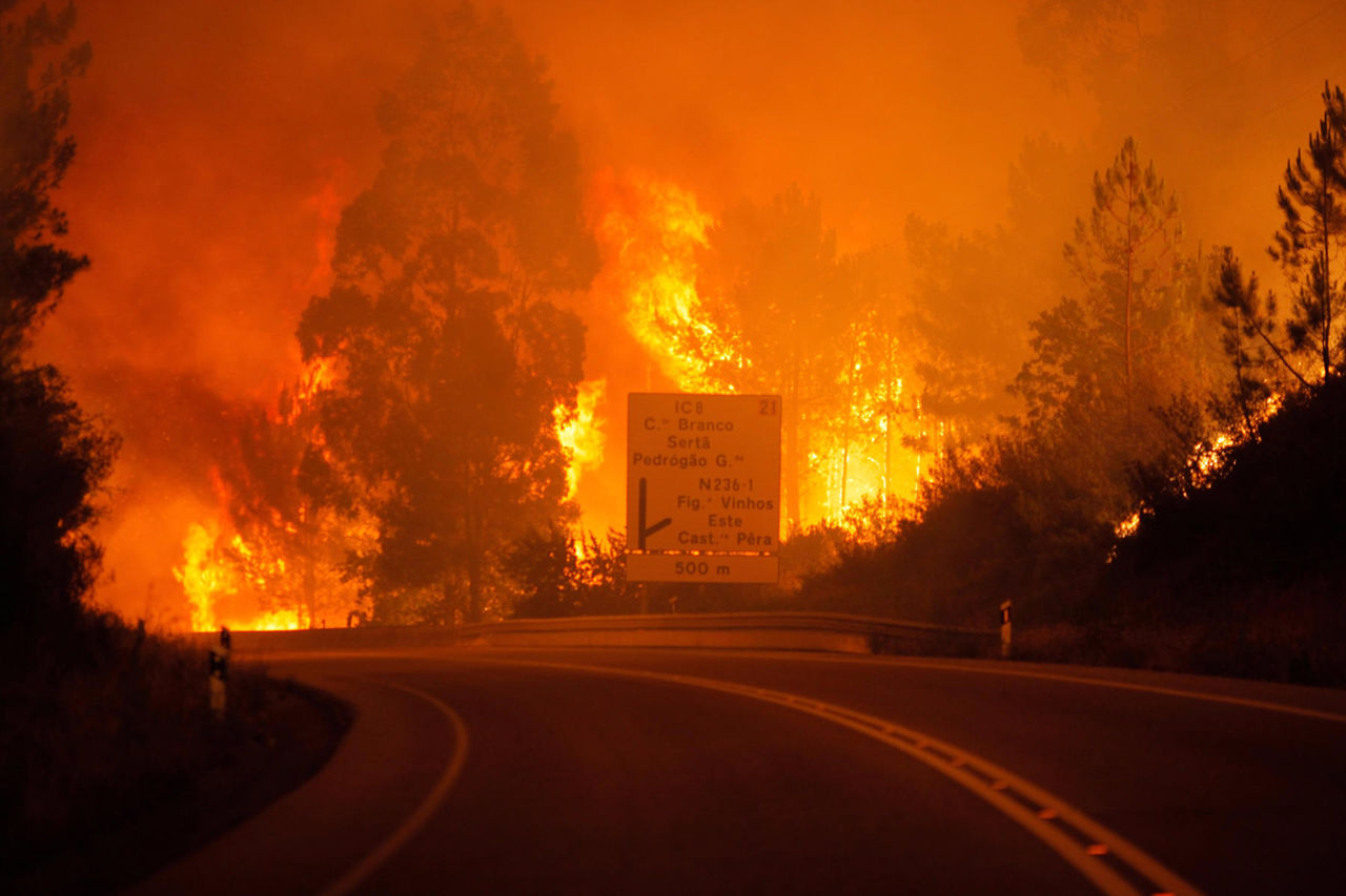 Масштабные пожары вПортугалии уже забрали жизни 62 человек