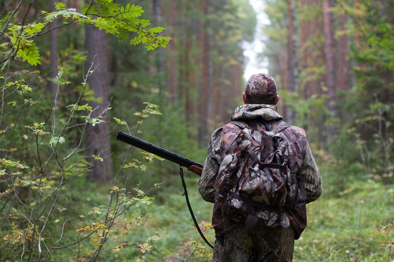 Охотники Тверской области будут сдавать экзамен побиологии