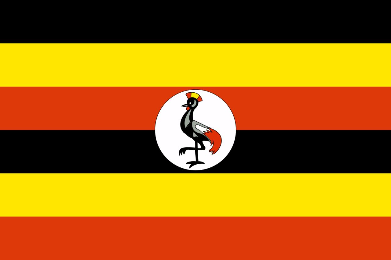 Впосольстве Уганды в столице России передрались дипработники