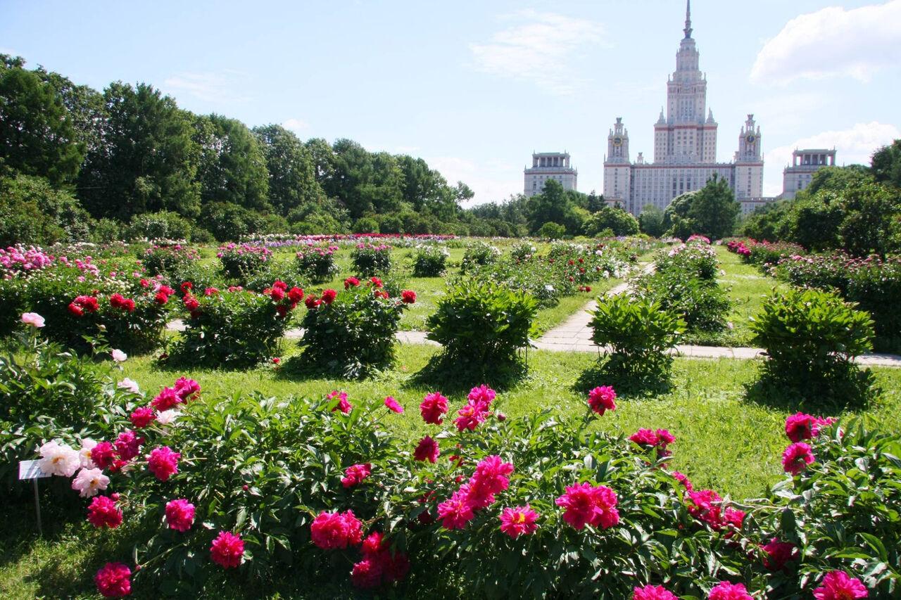 Администрация соцсети Instagram заблокировала аккаунт Ботанического сада МГУ сообщает'РИА