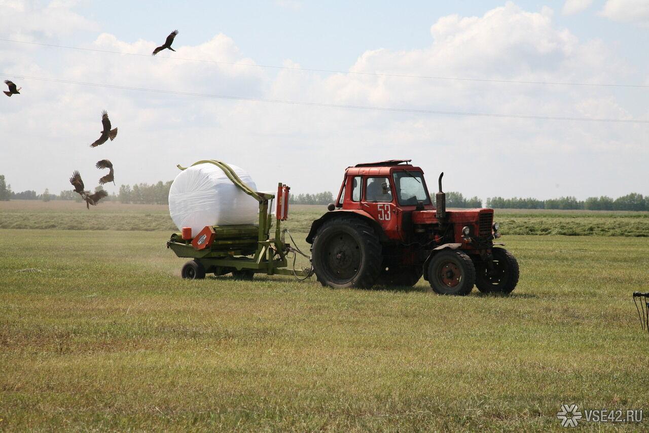 Территории 5-ти регионов СФО признали неблагоприятными для производства сельхозпродукции