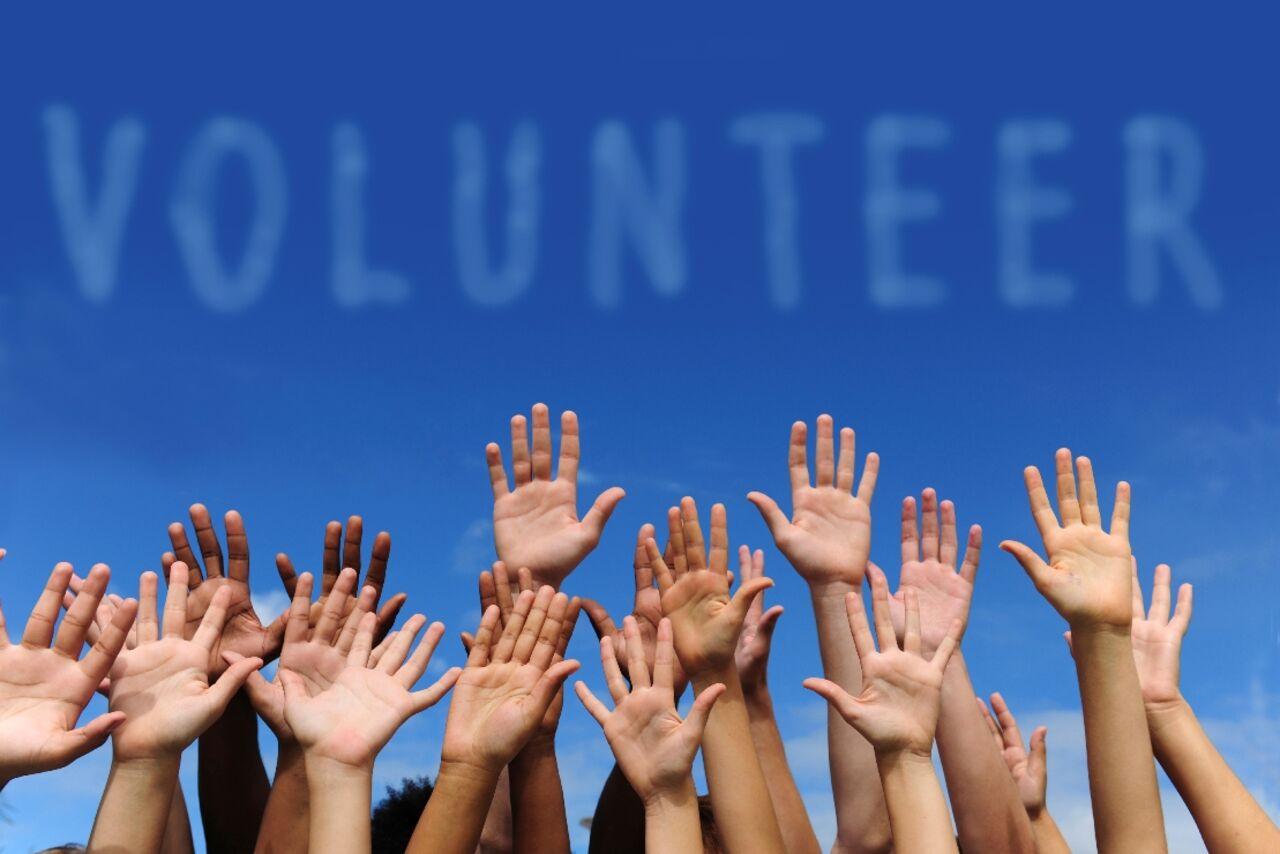В руководство будет внесен план волонтерского движения