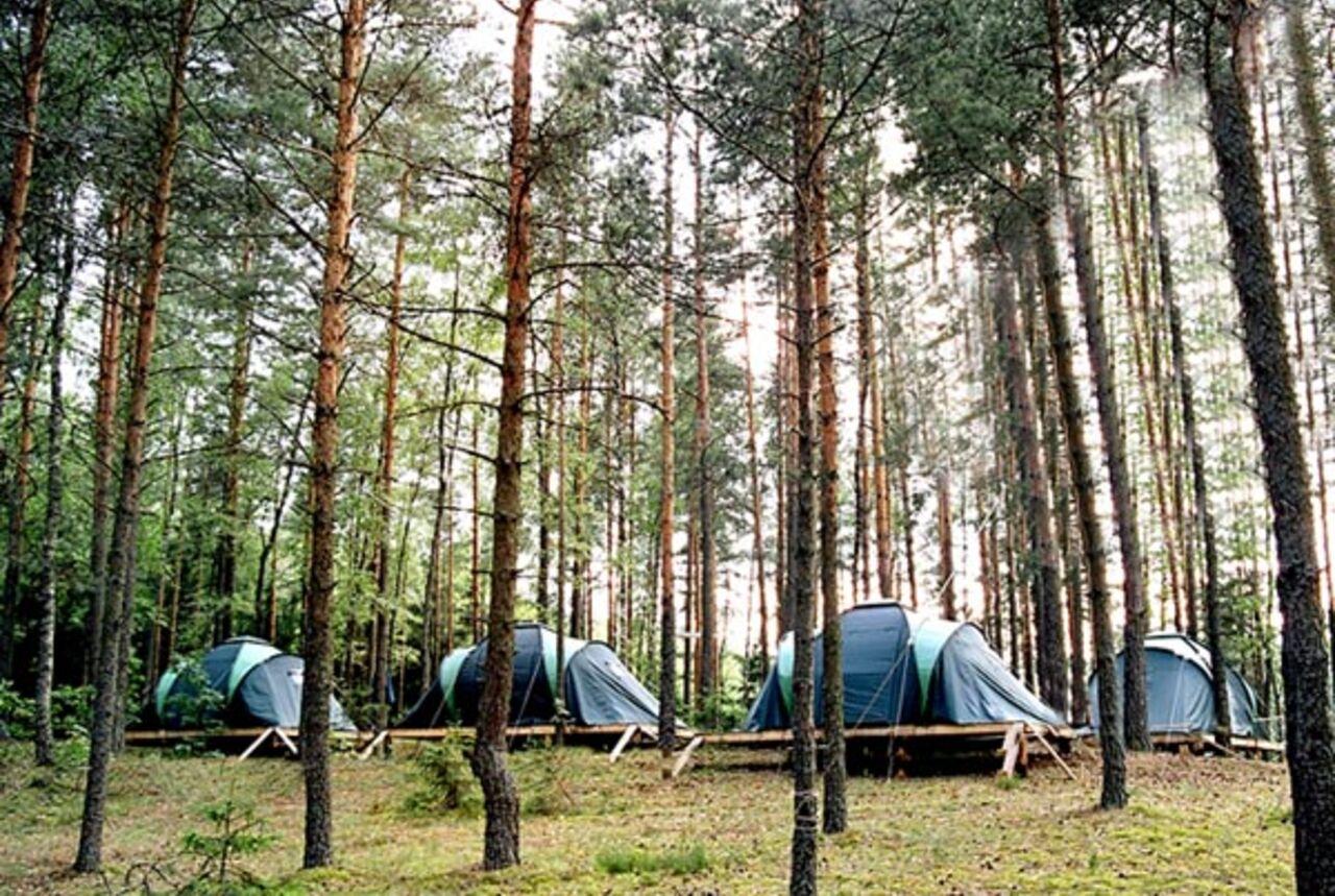 Из нелегального лагеря в Приморье эвакуировали детей