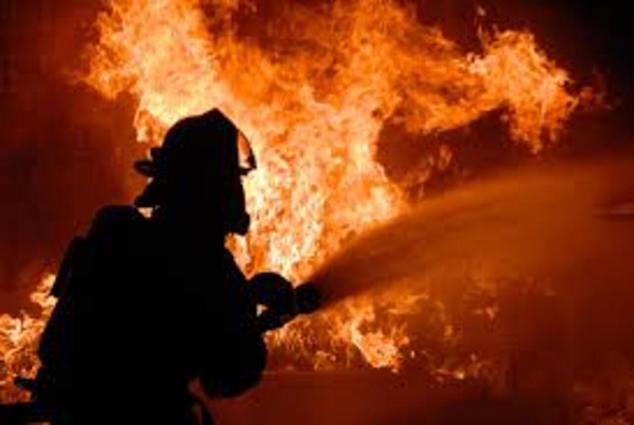 Пожарные спасли крокодила изгорящего вАстрахани развлекательного центра «Октябрь»