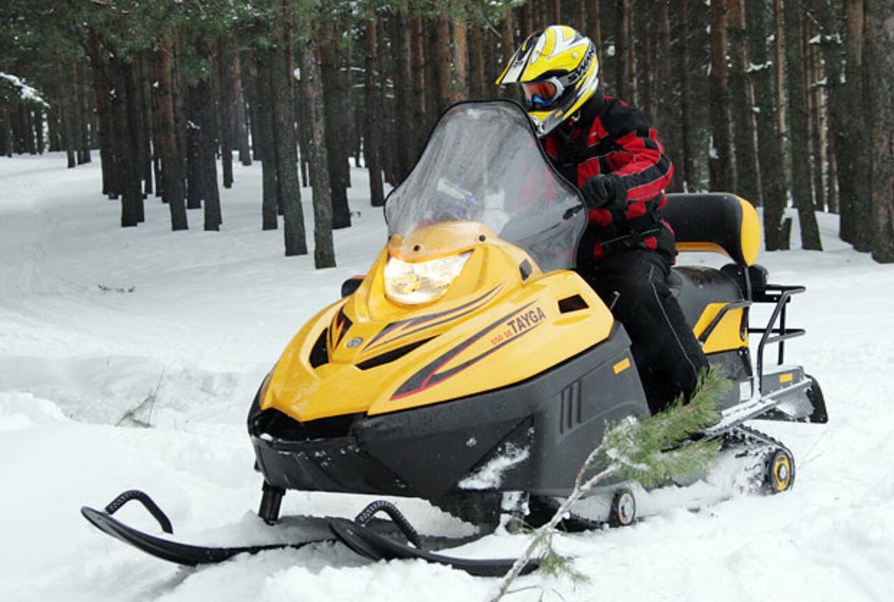 ВЮрге снегоход сбил сног пенсионерку