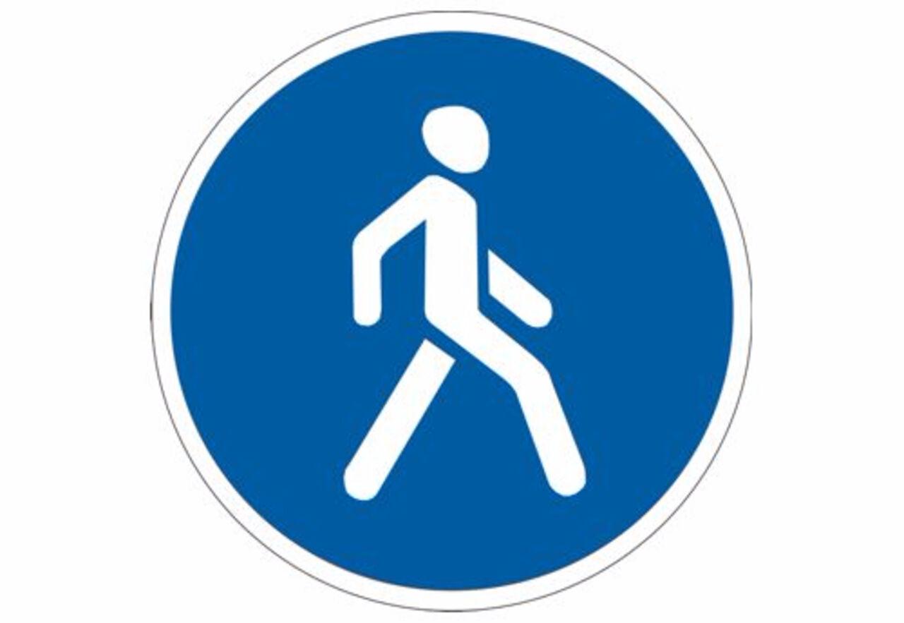 ВНовосибирске улицу Ленина будут делать пешеходной в зимний период