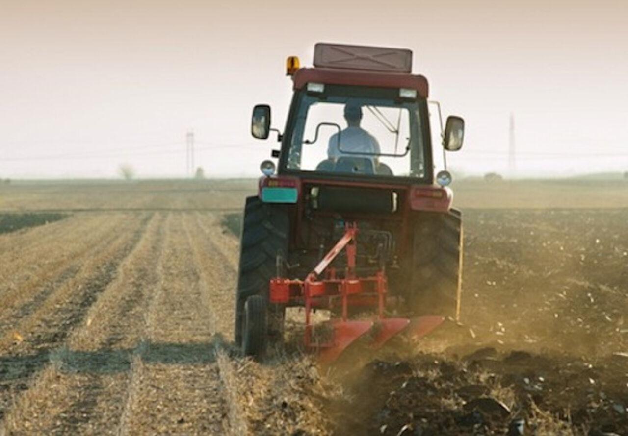 Узбекский лжеврач-тракторист заработал полмиллиона долларов