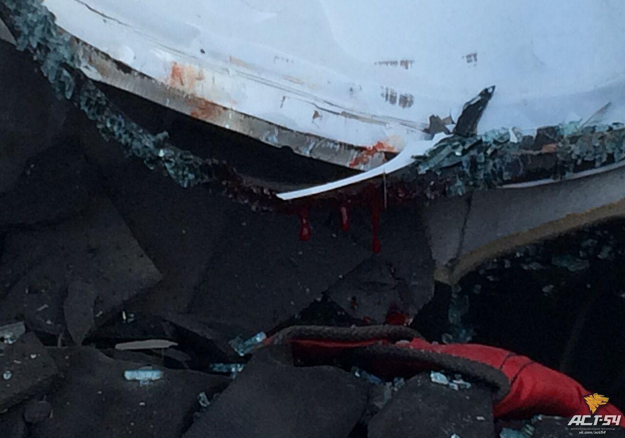 ВНовосибирске шестнадцатилетний ребенок выжил после падения с23 этажа