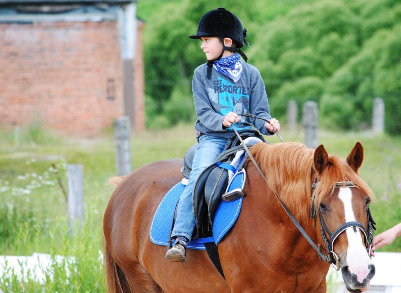 9-летний наездник тяжело пострадал наскачках