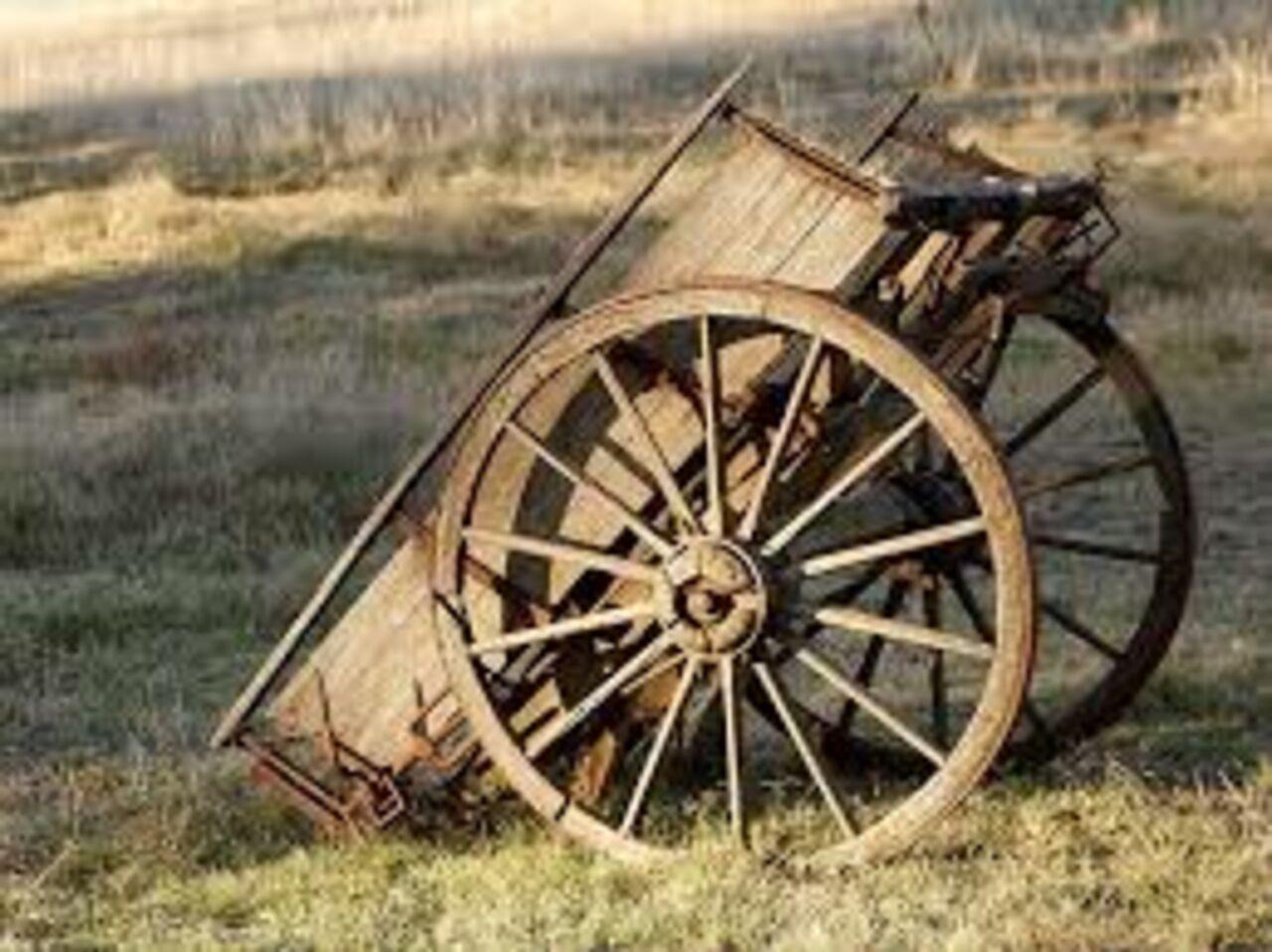 Граждане Омской области запрягли лошадь всани иназвали еесельской маршруткой