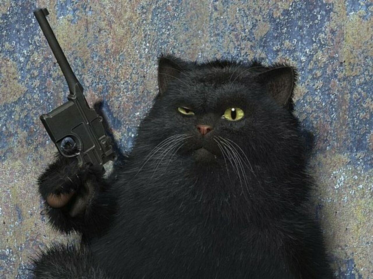 Североамериканская милиция обезоружила кота с«винтовкой»