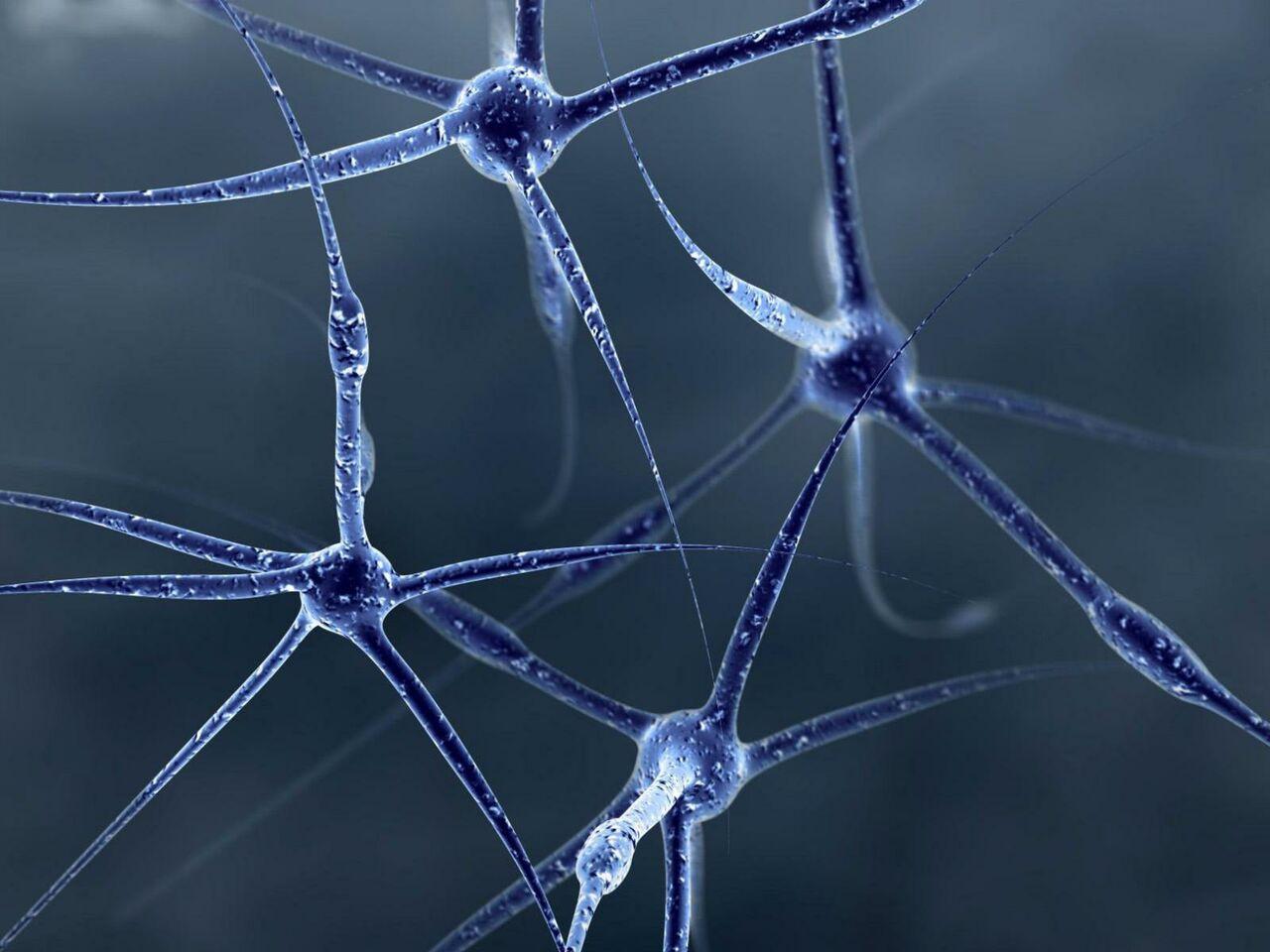 Откуда берутся магнитные шарики в мозге человека