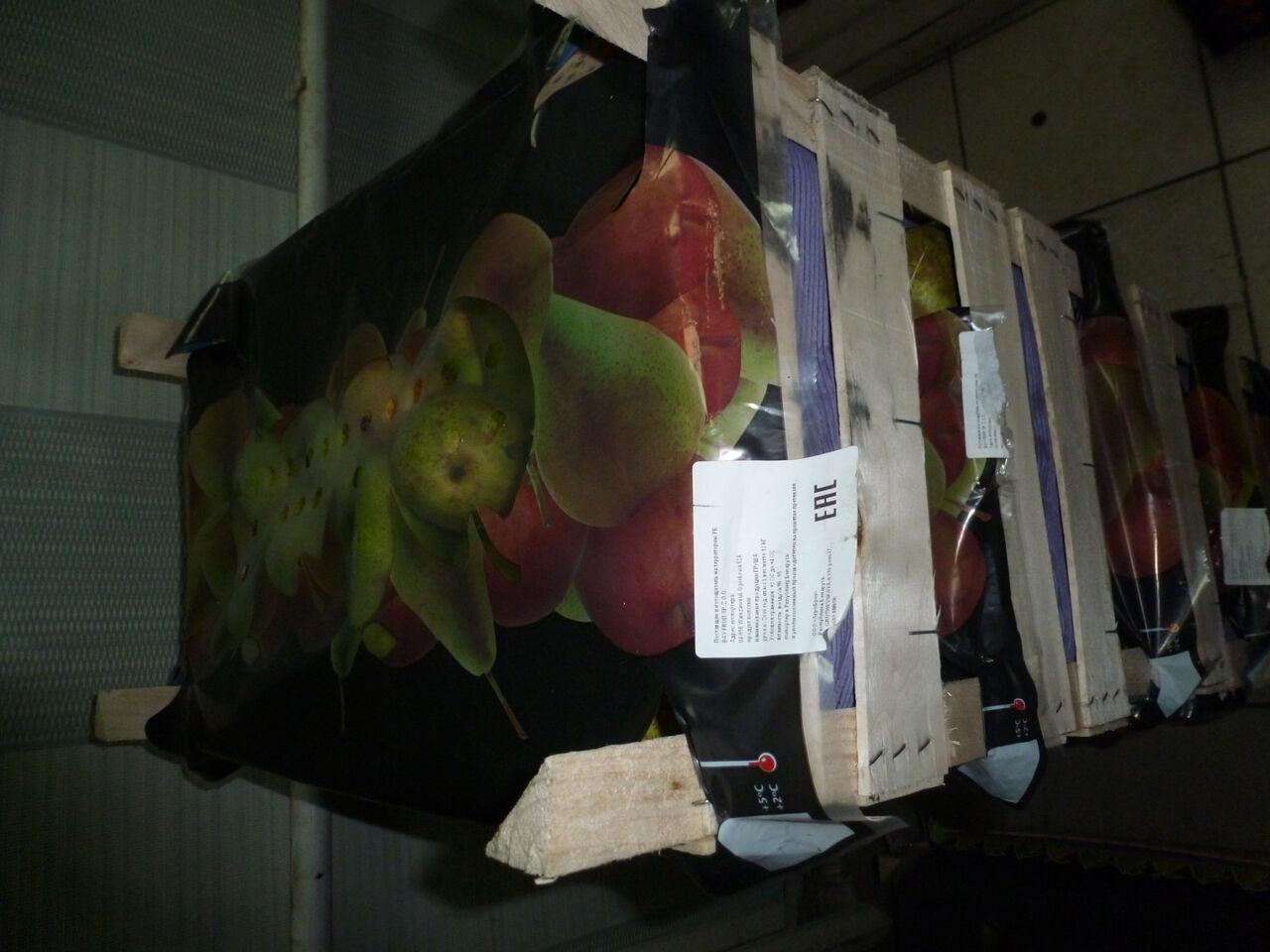 ВУссурийске бульдозером раздавили 700кг польских груш