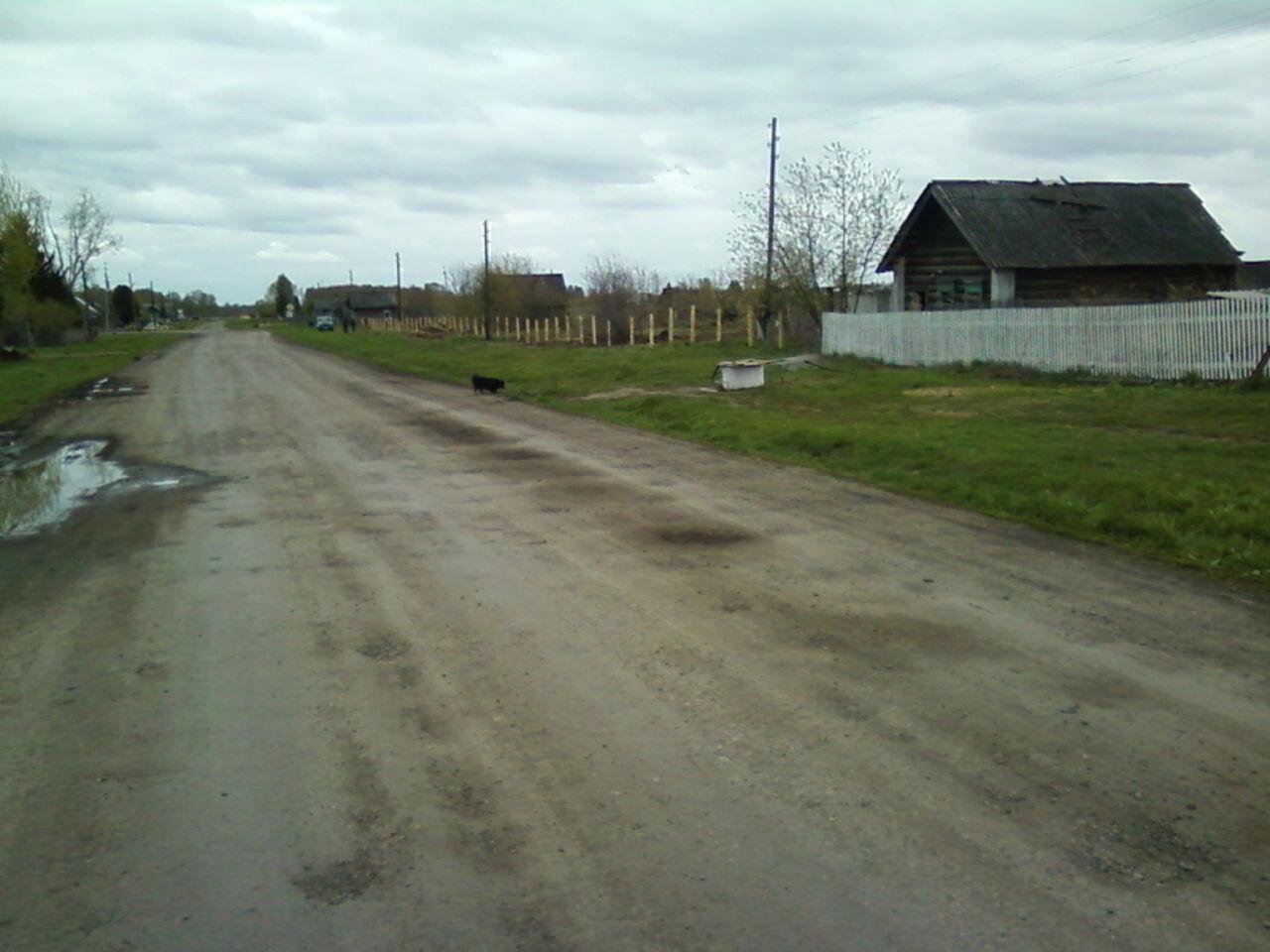 ВКемеровской области мать сожгла новорожденного ребенка