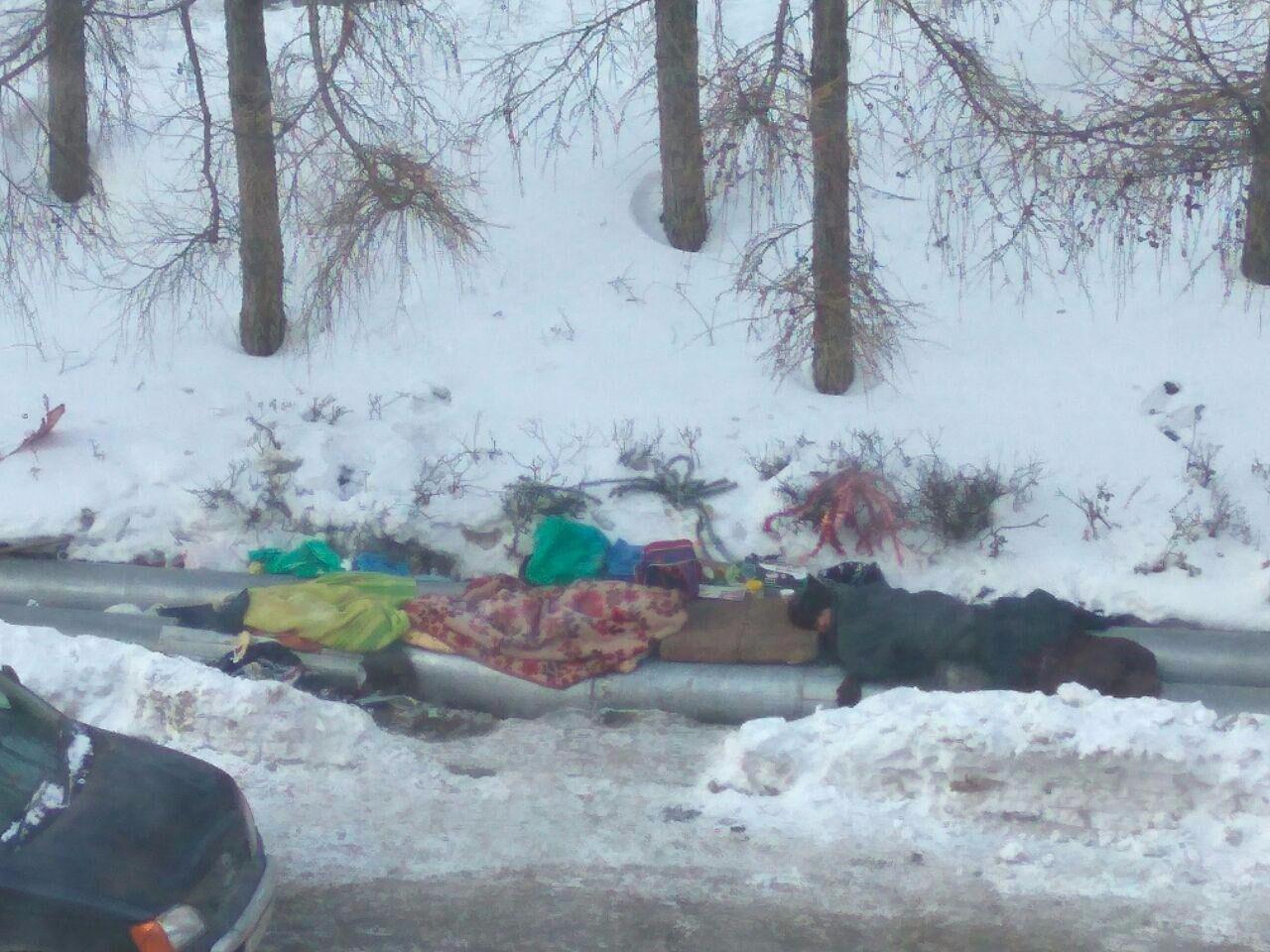 Граждан Кемерова пугают бездомные наплощади Волкова