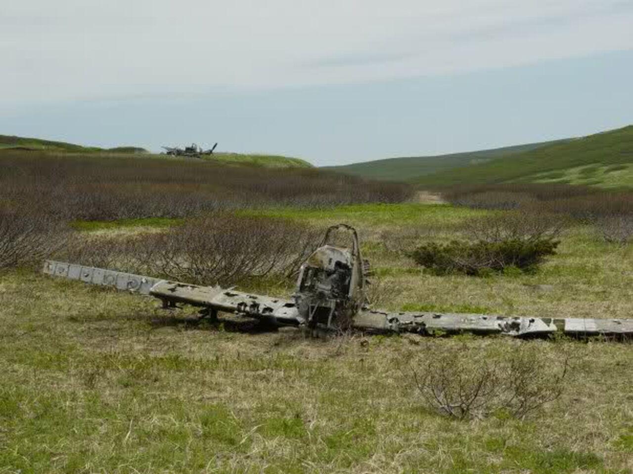 НаКурилах найдены останки советских ияпонских военных