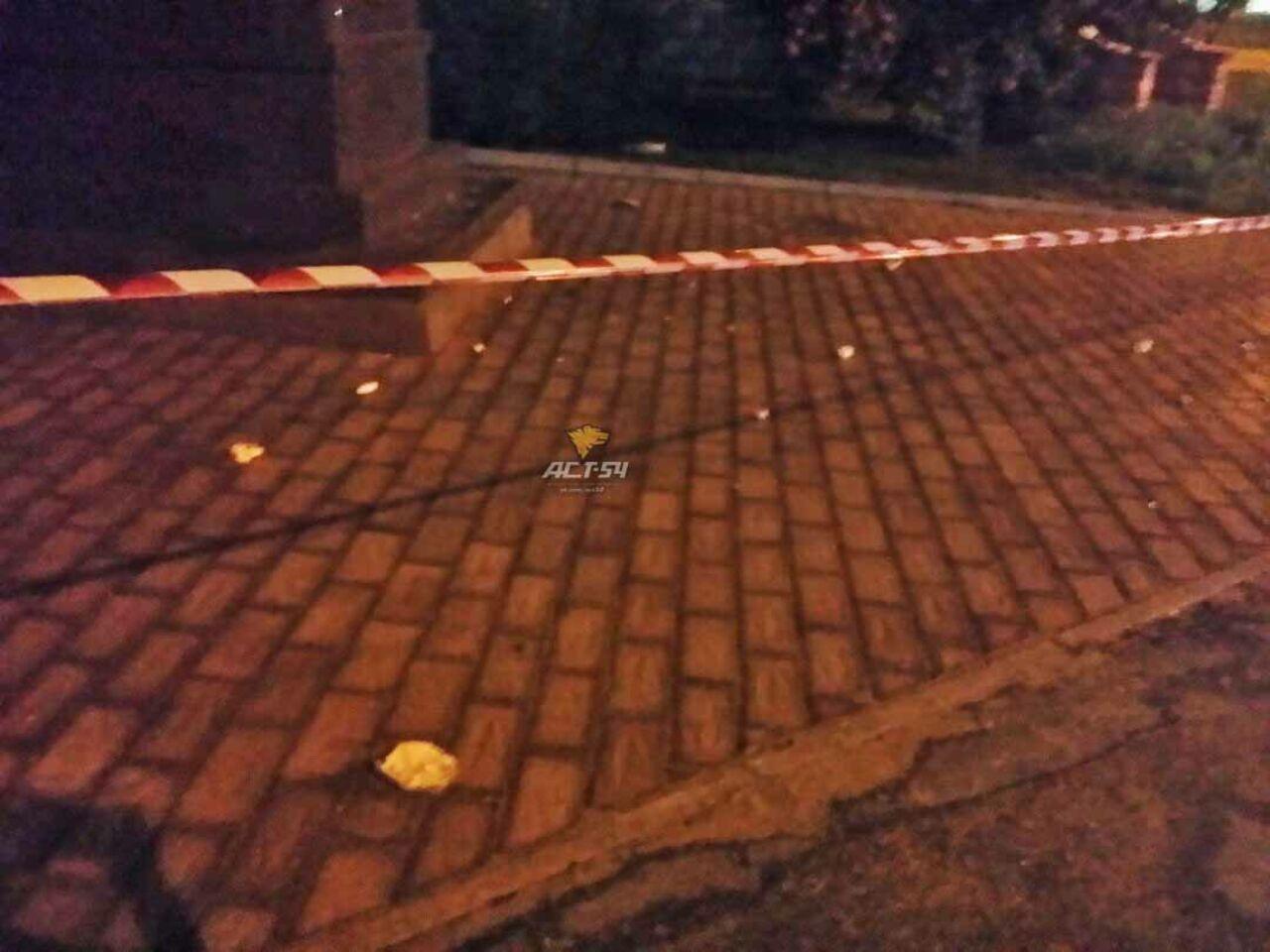 Гражданин Новосибирска с тесаком атаковал монумент НиколаюII ицесаревичу Алексею